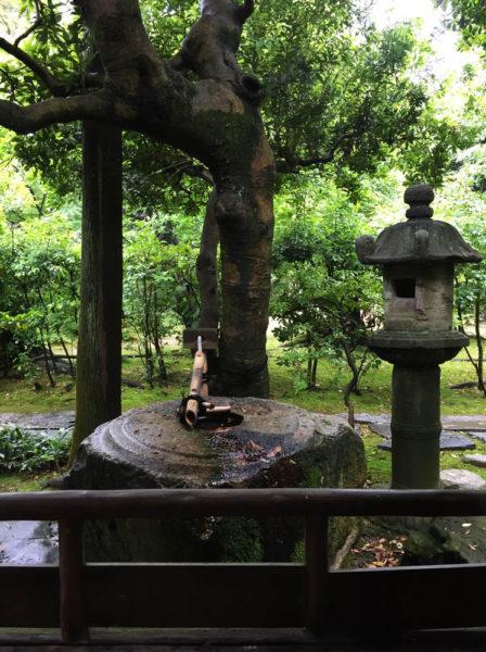 書院の前の手水鉢。佐久島(愛知県西尾市一色町)から採れた石で、「佐久の島」と呼ばれているそうです。